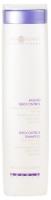 Hair Company Double Action Sebocontrol Shampoo - Специальный шампунь регулирующий работу сальных желез